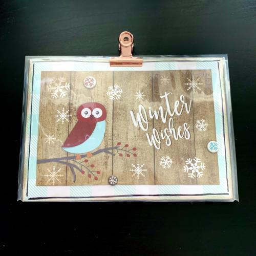 Winter Wishes Owl